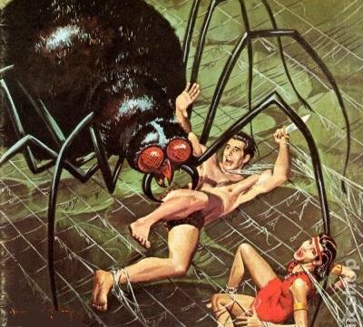 spider_fight8