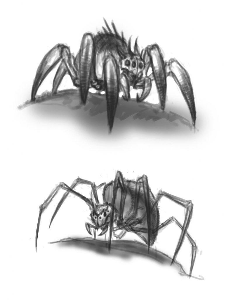 spider_sketch01