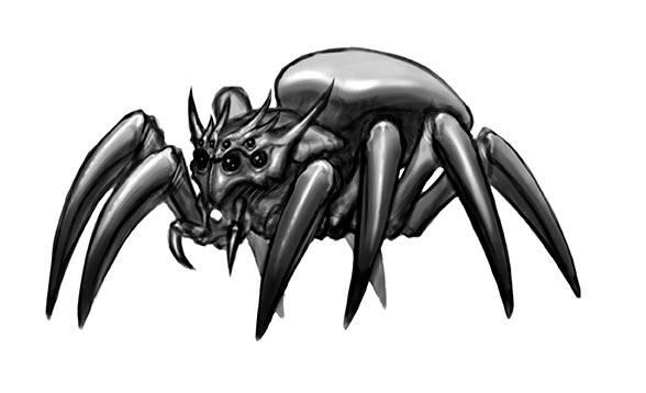 spider_sketch02
