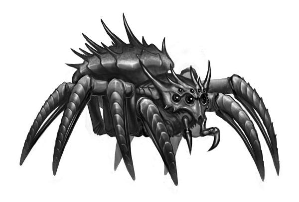 spider_sketch03